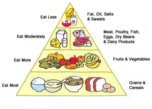 anti-obesity diet chart