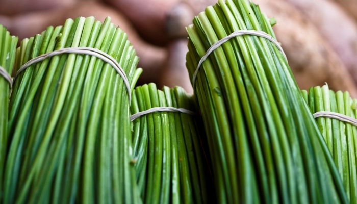 All you Need to Know about the Health Benefits of Chives