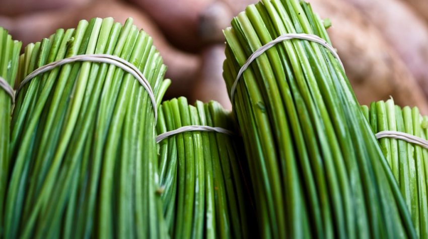 close-up of chives - nutritional facts
